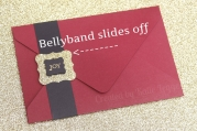 Stampin Up Christmas Gift Certificate - Sliing off bellyband - Katie and Rachel Legge